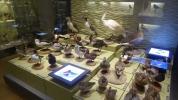 20-Museum