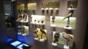 21-Museum